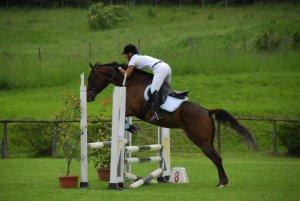 queena12